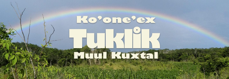 Ko'one'ex